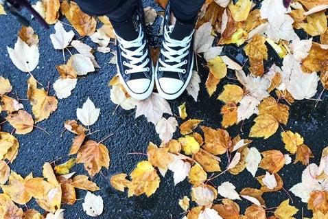 Meredith Kress-Leaves Wet Rain Nature Fall Orange Autumn Black Shoes Converse Jeans Pavement Outside Logo