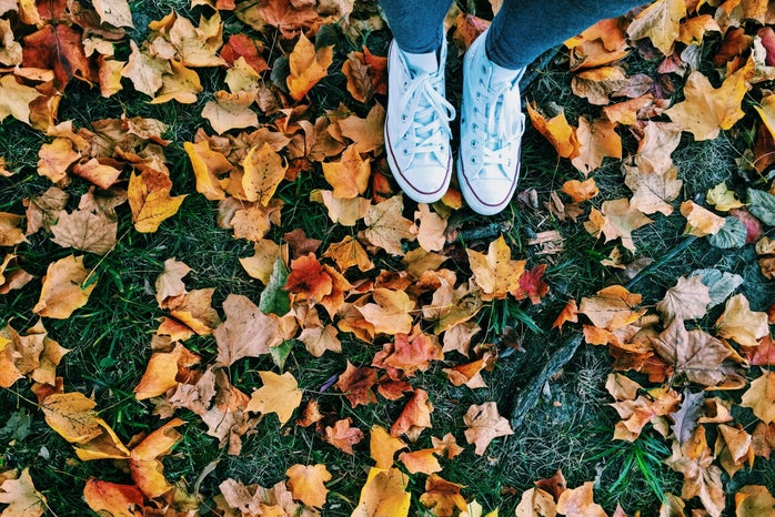 Meredith Kress-Converse And Fallen Leaves