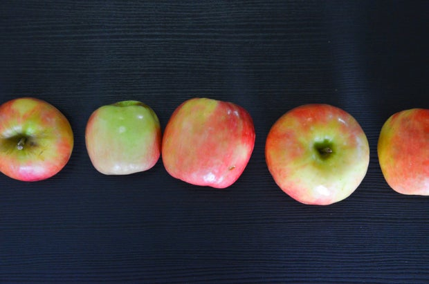 Apples In Row