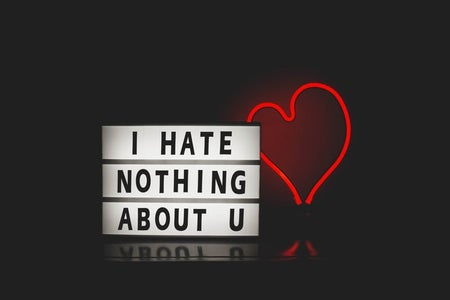 "Small sign that says ""I hate nothing about u"" and a red neon heart"