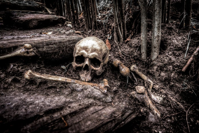 A skull and bones sits in a forest, grey scale