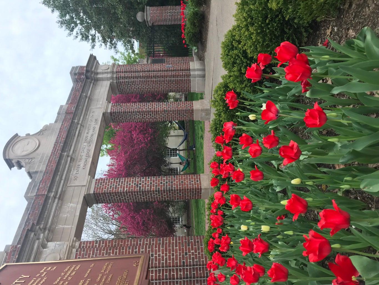 Ohio University College Gateway