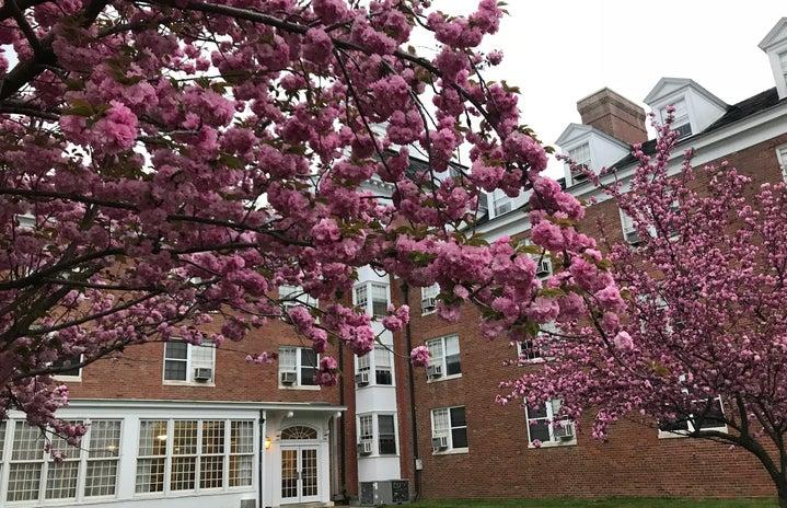 Ohio University Washington Hall Spring