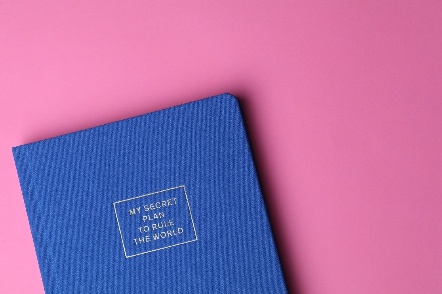 blue notebook saying my secret plan to rule the world on cover with pink background