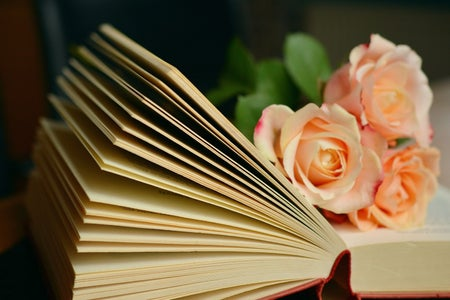 open book with pink roses laid on top