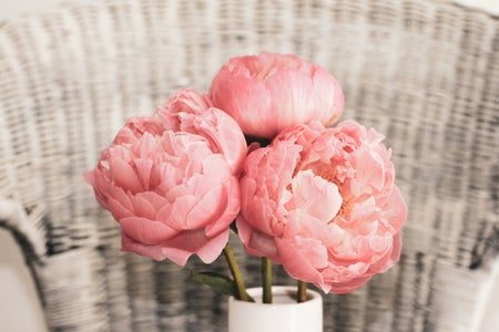 three pink peonies in a vase