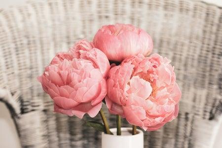 three pink peonies in a vase