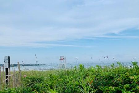 Rhode Island beach with grass