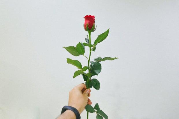 man holding rose