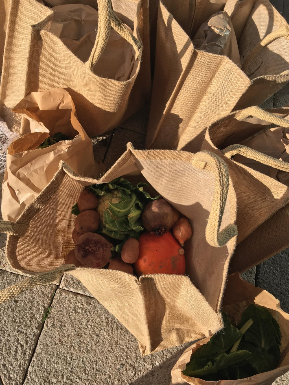 Bags of vegetables