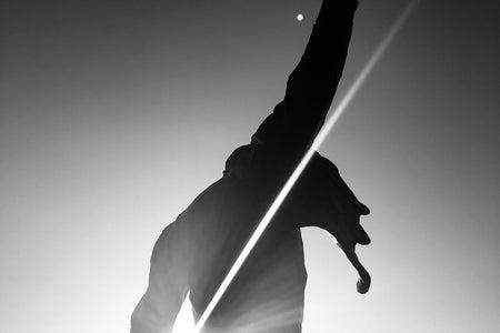 Freddie Mercury Memorial Montreux