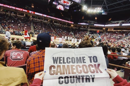 basketball, university of south carolina