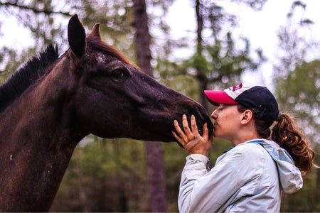 Katherine's horse