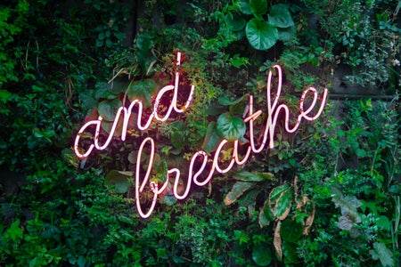 "a pink neon ""and breathe"" sign over a plant wall"