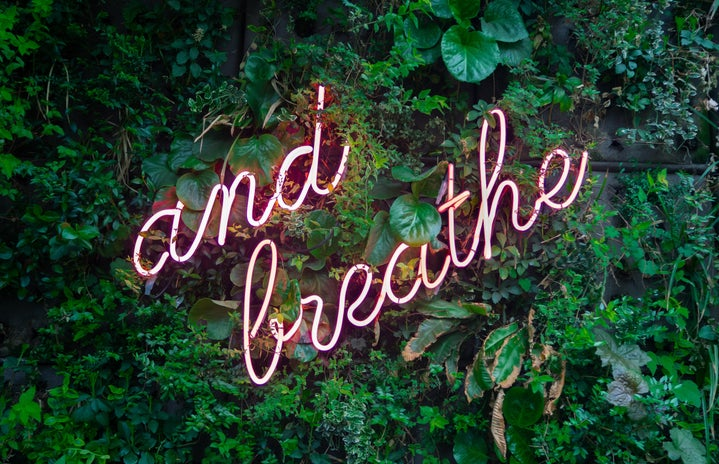 """a pink neon """"and breathe"""" sign over a plant wall"""