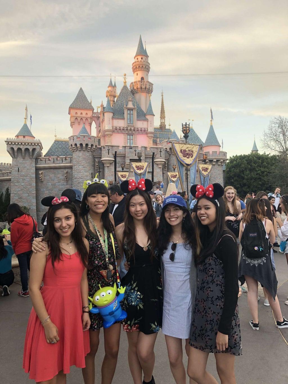 friends at Disneyland