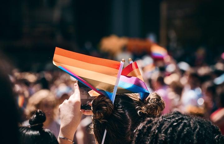 woman, lgbt, lgbtq, flag, rally