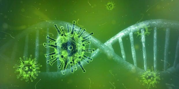 Germs/coronavirus