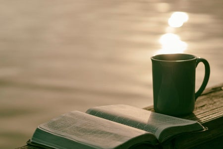A green mug and a book overlooking the sunrise.