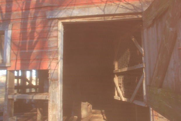 A doorway to an abandoned, red barn, bathed in natural sunlight.