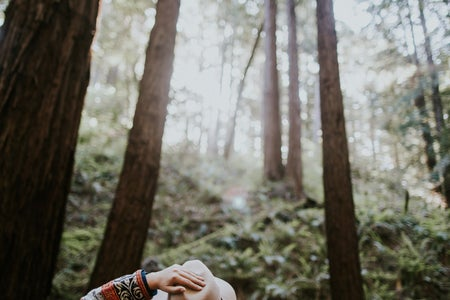 forest, hike, calm, trees, summer, fun, hat, backpack, nature, mist, grass