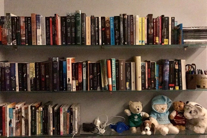 bookcase with books