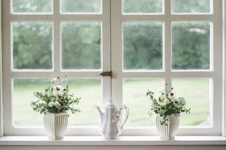 flowers on white windowsill