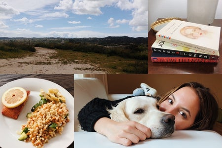 College of activities: girl with dog, food, books, and hiking