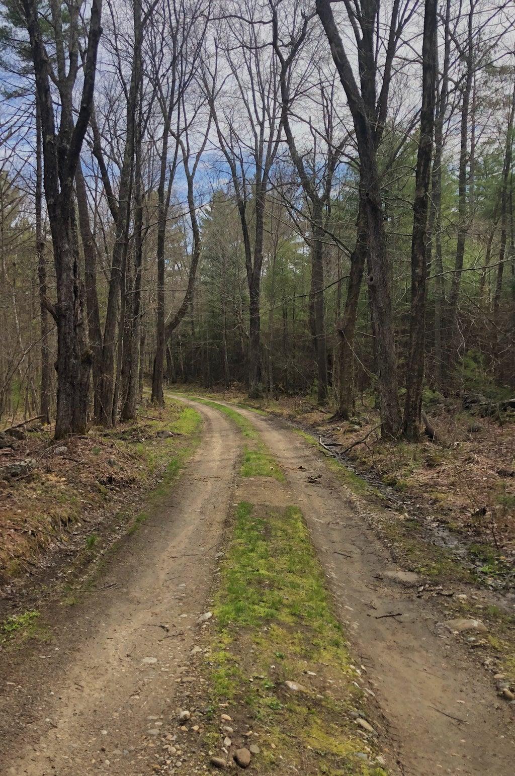 Quabbin Reservoir path