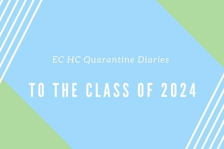 The hero image for this week's quarantine diaries!