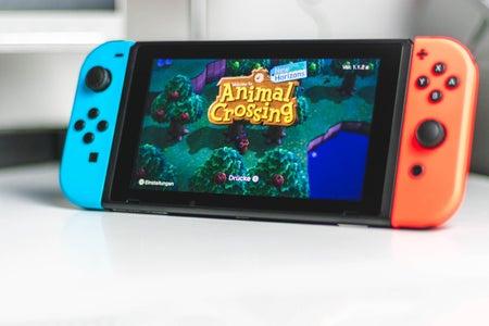 Animal Crossing: New Horizons on the Nintendo Switch