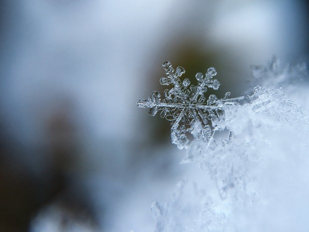 macro photo of a snow flake