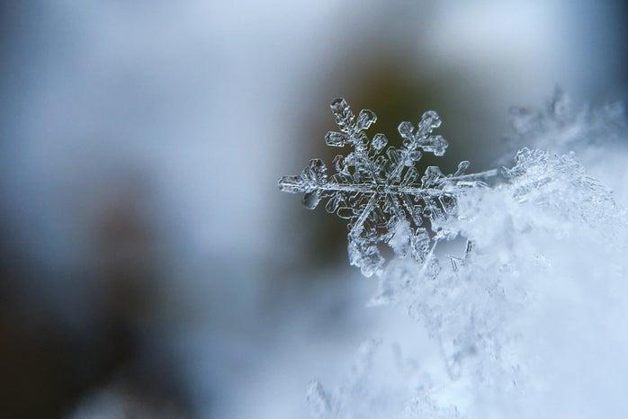 macro photo of a snow flake