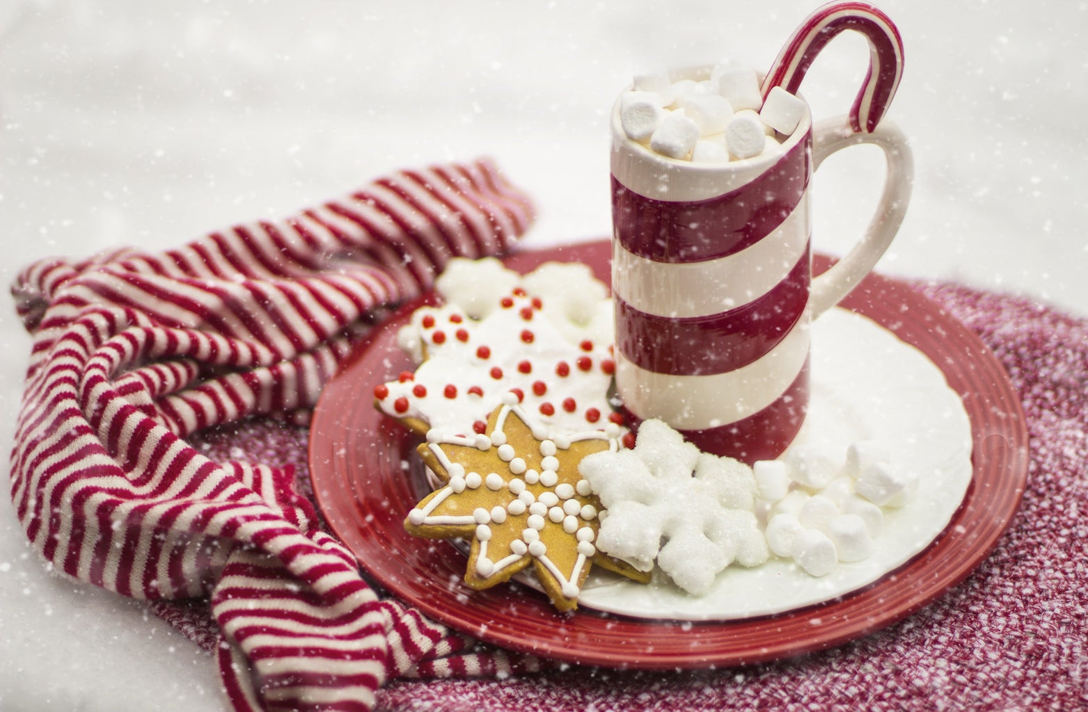 assorted cookies and hot chocolate
