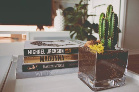 small cactus plant next to a stack of books on white coffee table