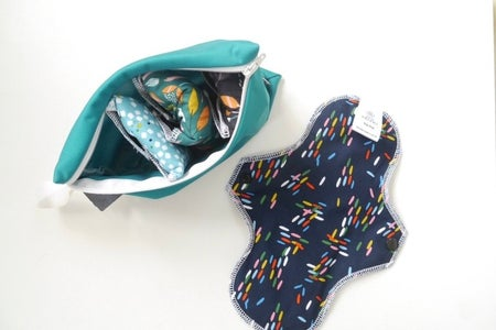 Image is of reusable pads and a case