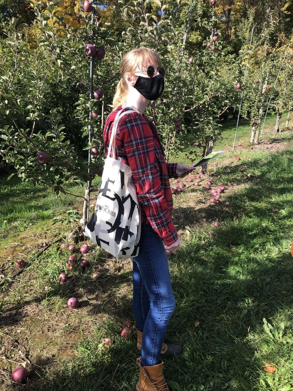 apple picking me