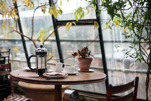 coffee shop by large windows and plants