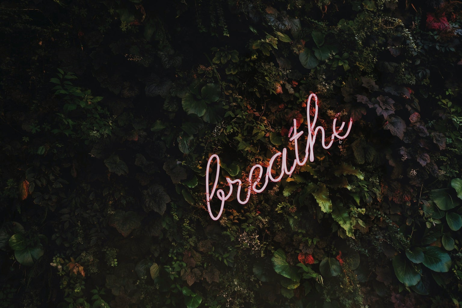 Breath sign