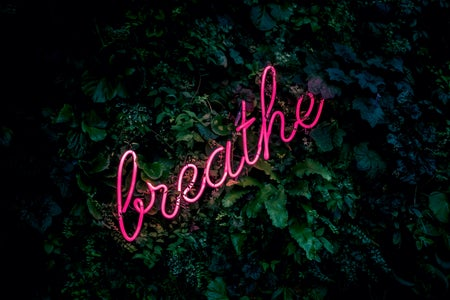 "The background are leaves with the hot pink neon sign ""breathe"""