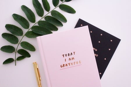 2 journals spread out on a blank background with a pen and faux plant