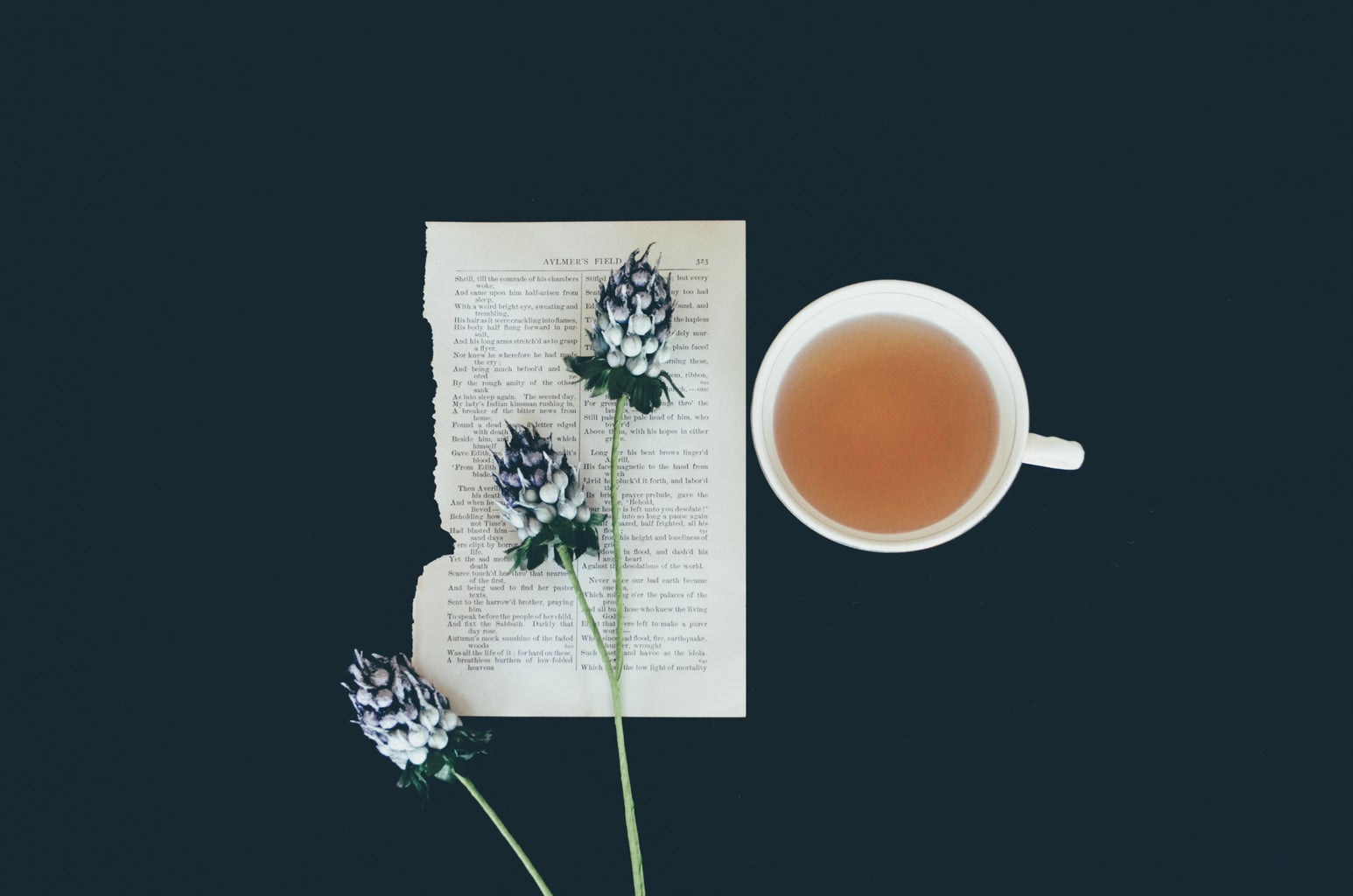 teacup with flower and book page