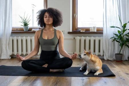 woman meditating with shibu inu dog