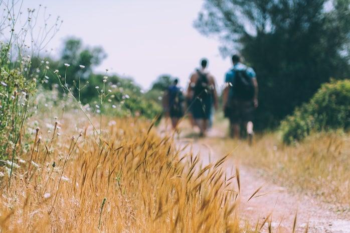 3 people hiking