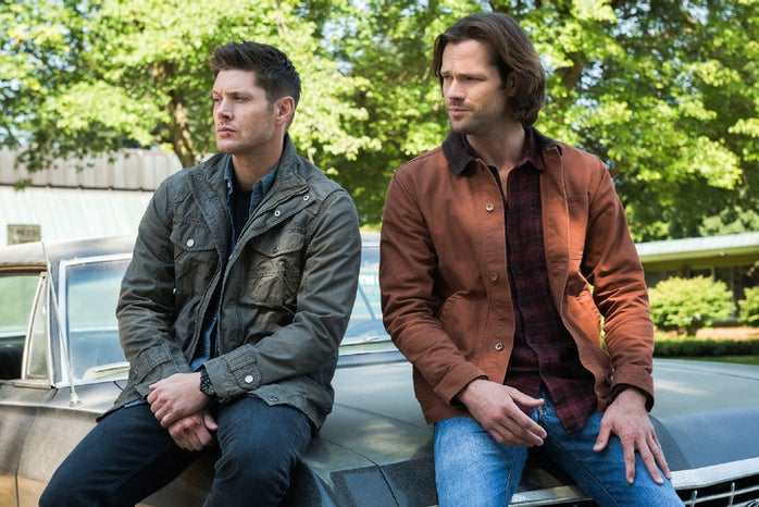 Sam and Dean from the Supernatural series