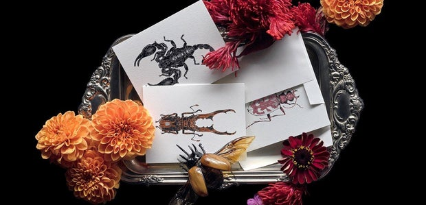 magic cards surrounded by flowers and bug