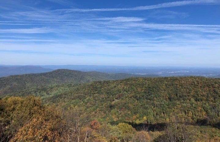 view from the top of a mountain during fall